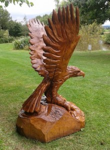 life sized Eagle carved in Oak